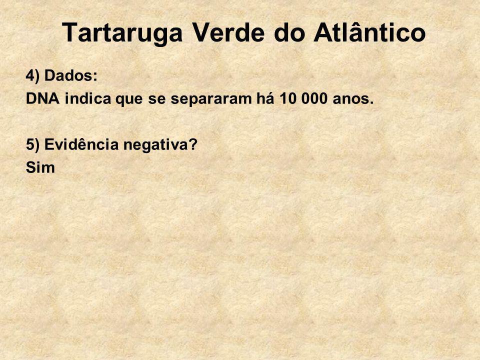 Tartaruga Verde do Atlântico 4) Dados: DNA indica que se separaram há 10 000 anos. 5) Evidência negativa? Sim
