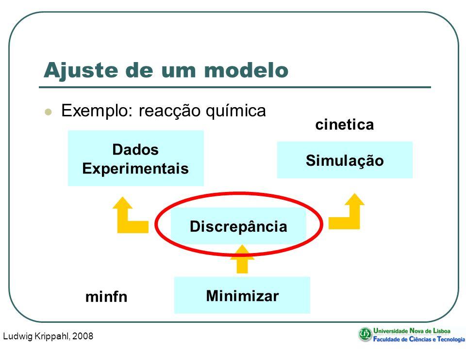 Ludwig Krippahl, 2008 4 Ajuste de um modelo Exemplo: reacção química Dados Experimentais Simulação Discrepância Minimizar minfn cinetica