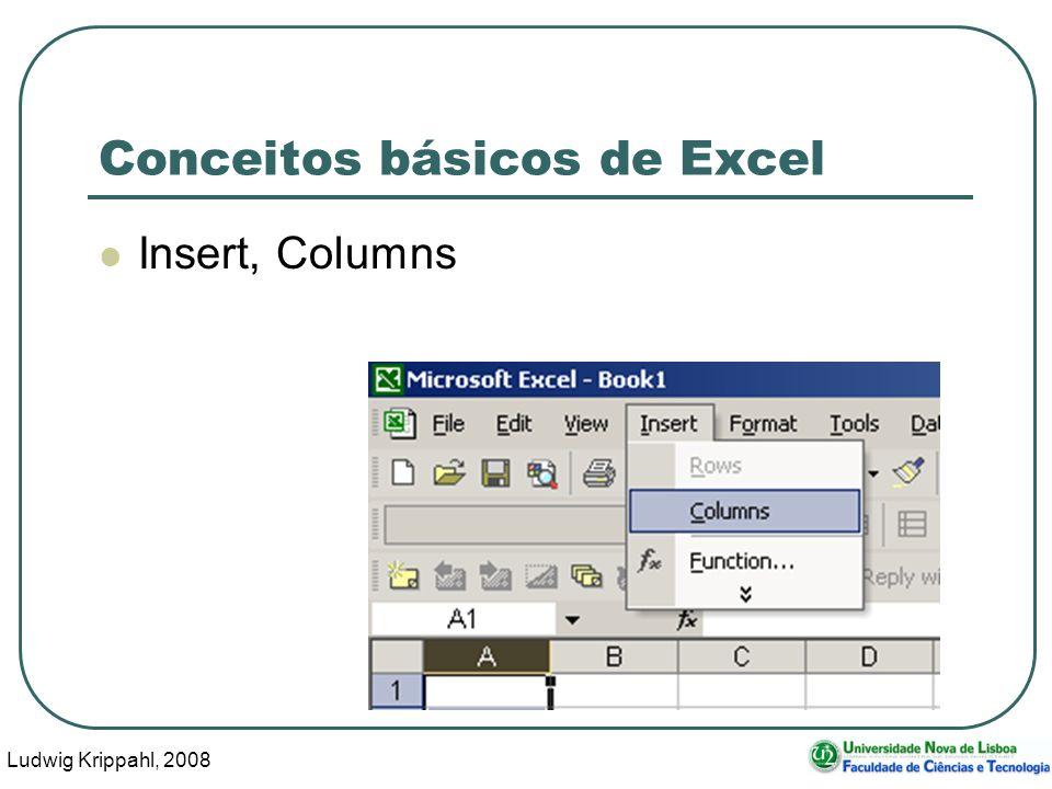 Ludwig Krippahl, 2008 69 Conceitos básicos de Excel Insert, Columns