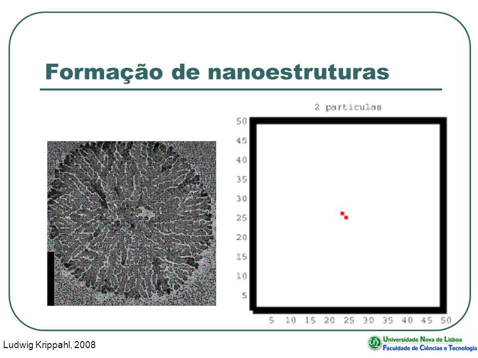 Ludwig Krippahl, 2008 21 Formação de nanoestruturas