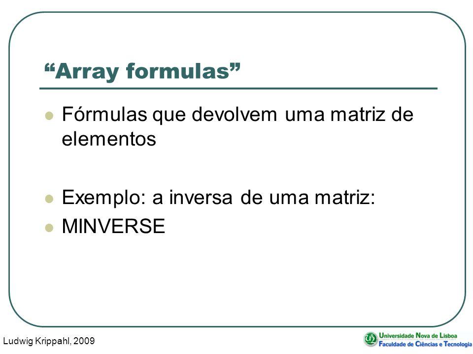 Ludwig Krippahl, 2009 29 Array formulas Fórmulas que devolvem uma matriz de elementos Exemplo: a inversa de uma matriz: MINVERSE