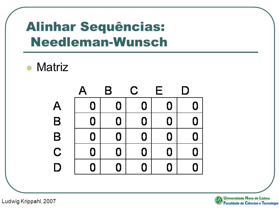 Ludwig Krippahl, 2007 45 Alinhar Sequências: Needleman-Wunsch Matriz