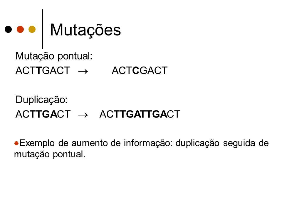 Mutações Mutação pontual: ACTTGACT ACTCGACT Duplicação: ACTTGACT ACTTGATTGACT Exemplo de aumento de informação: duplicação seguida de mutação pontual.