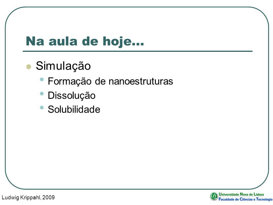 Ludwig Krippahl, 2009 2 Na aula de hoje... Simulação Formação de nanoestruturas Dissolução Solubilidade