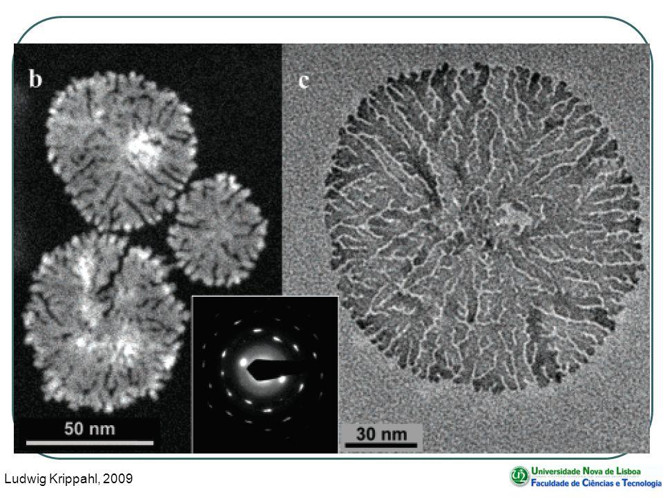 Ludwig Krippahl, 2009 4 Formação de nanoestruturas