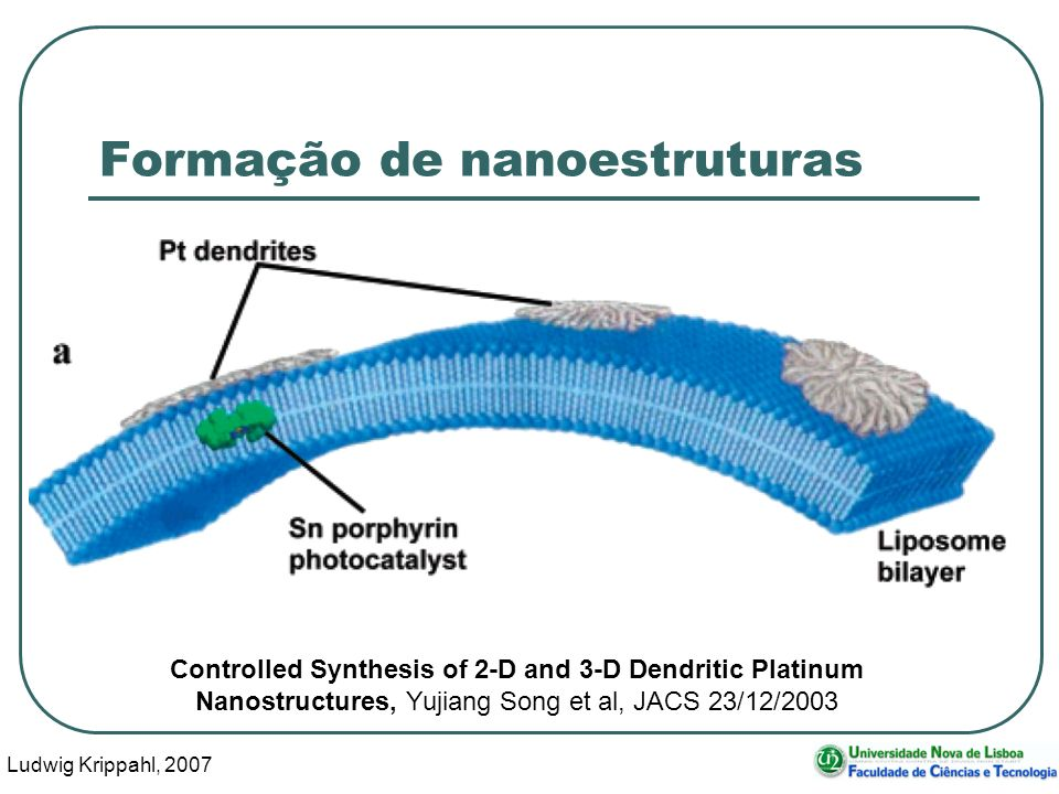 Ludwig Krippahl, 2007 51 Formação de nanoestruturas Controlled Synthesis of 2-D and 3-D Dendritic Platinum Nanostructures, Yujiang Song et al, JACS 23/12/2003