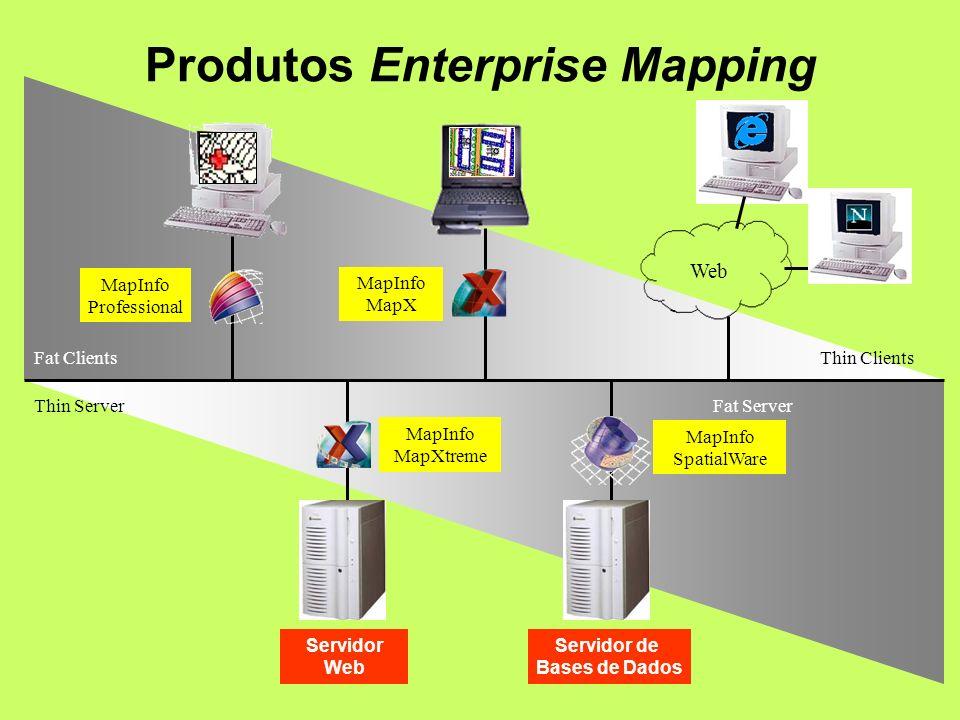 Thin Server Fat Server Fat Clients Thin Clients Servidor de Bases de Dados Web Servidor Web MapInfo Professional MapInfo MapX MapInfo MapXtreme MapInfo SpatialWare Produtos Enterprise Mapping