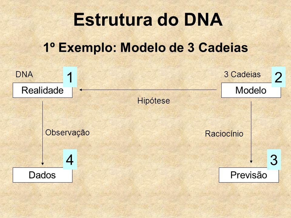 Estrutura do DNA 1º Exemplo: Modelo de 3 Cadeias RealidadeModelo Hipótese Dados Observação 4 Previsão 3 Raciocínio 12 DNA3 Cadeias