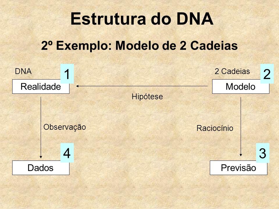 Estrutura do DNA 2º Exemplo: Modelo de 2 Cadeias RealidadeModelo Hipótese Dados Observação 4 Previsão 3 Raciocínio 12 DNA2 Cadeias