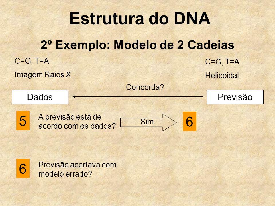 Estrutura do DNA 2º Exemplo: Modelo de 2 Cadeias C=G, T=A Imagem Raios X C=G, T=A Helicoidal DadosPrevisão Concorda.