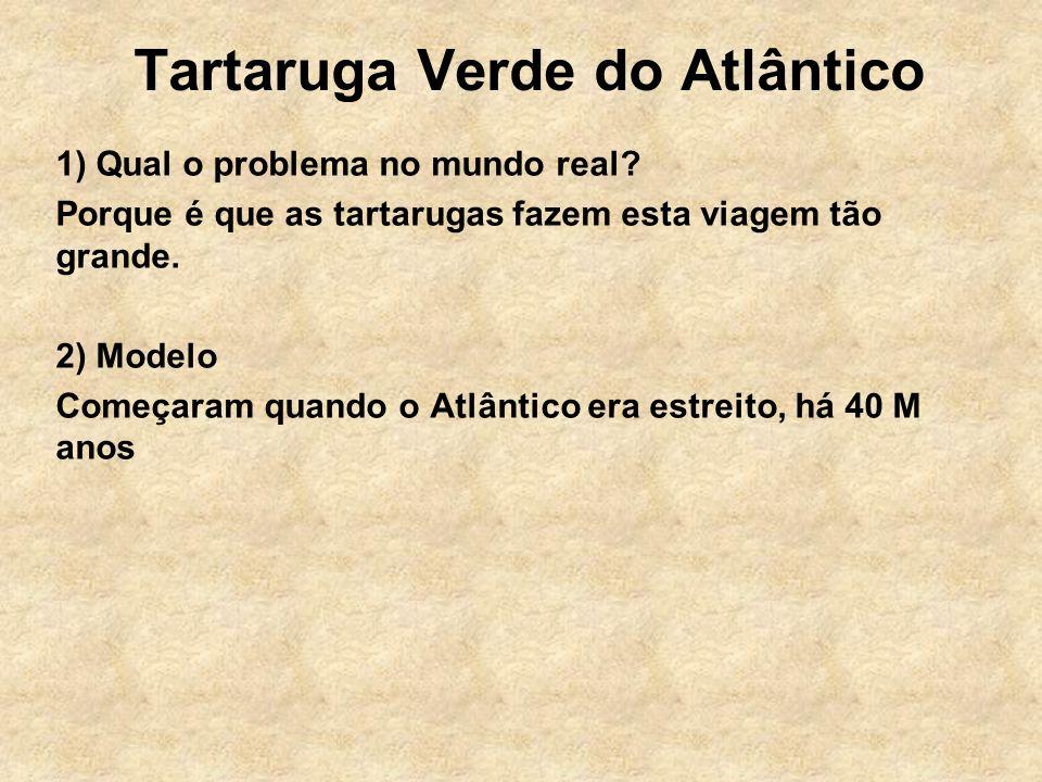 Tartaruga Verde do Atlântico 1) Qual o problema no mundo real.