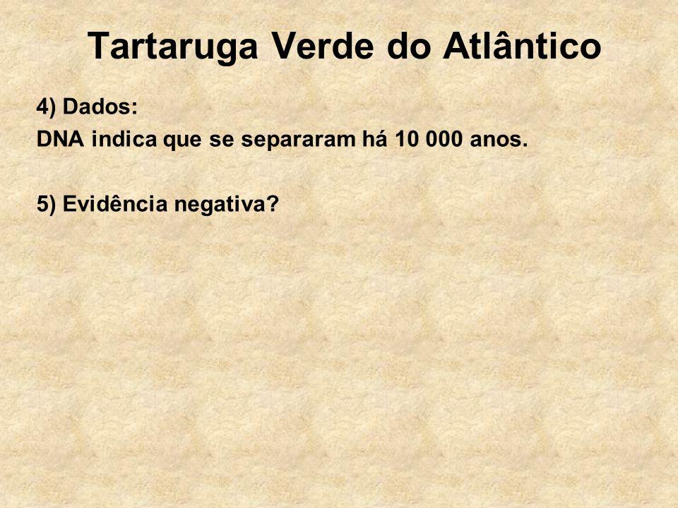 Tartaruga Verde do Atlântico 4) Dados: DNA indica que se separaram há 10 000 anos. 5) Evidência negativa?