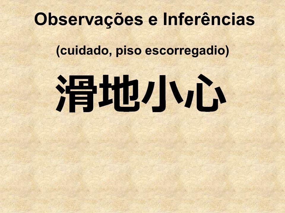 Observações e Inferências (cuidado, piso escorregadio)