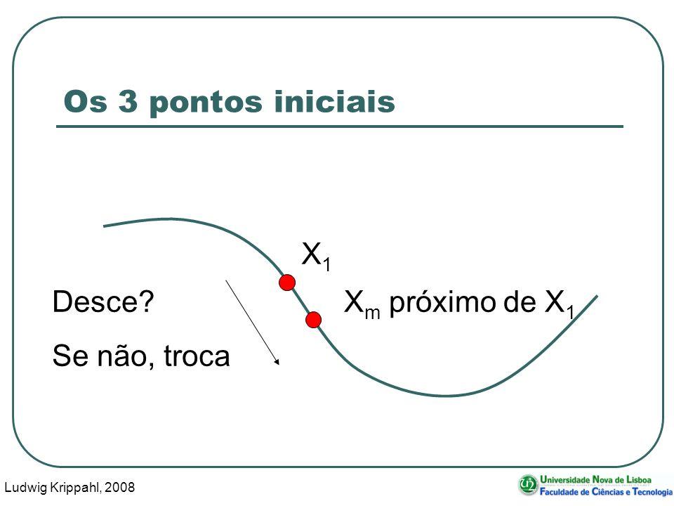 Ludwig Krippahl, 2008 19 Os 3 pontos iniciais X1X1 X m próximo de X 1 Desce Se não, troca