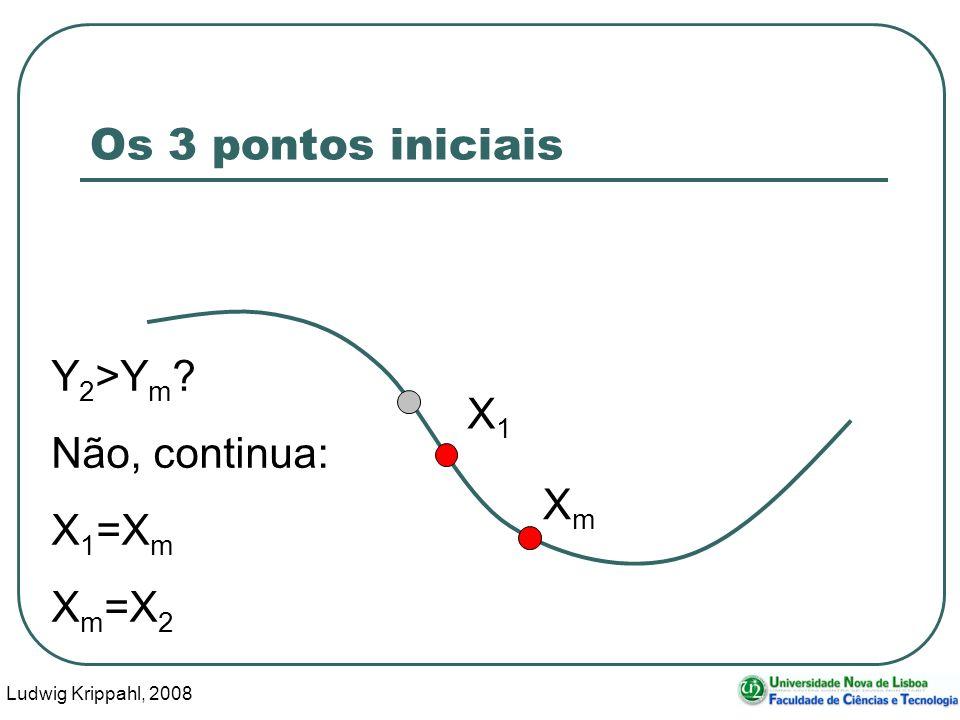 Ludwig Krippahl, 2008 22 Os 3 pontos iniciais X1X1 XmXm Y 2 >Y m Não, continua: X 1 =X m X m =X 2