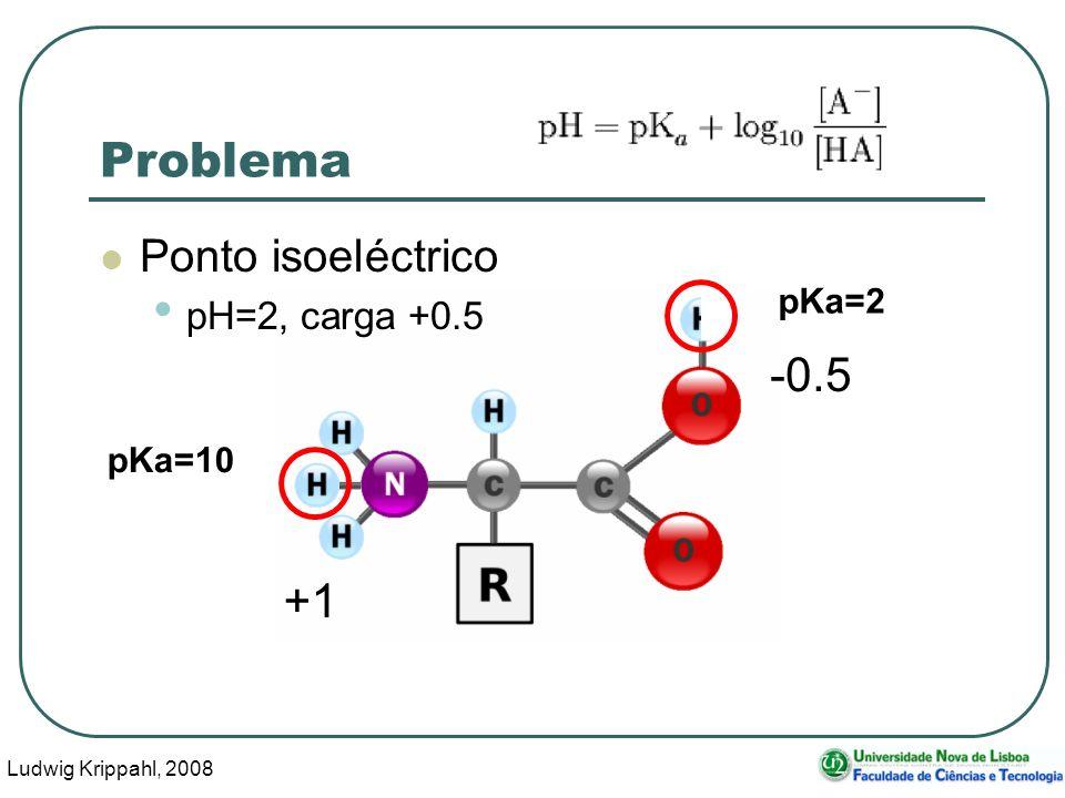 Ludwig Krippahl, 2008 8 Problema Ponto isoeléctrico pH=2, carga +0.5 pKa=10 pKa=2 +1 -0.5
