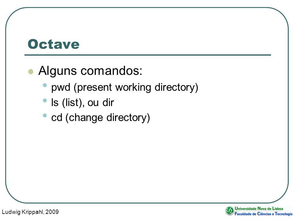 Ludwig Krippahl, 2009 16 Octave Alguns comandos: pwd (present working directory) ls (list), ou dir cd (change directory)