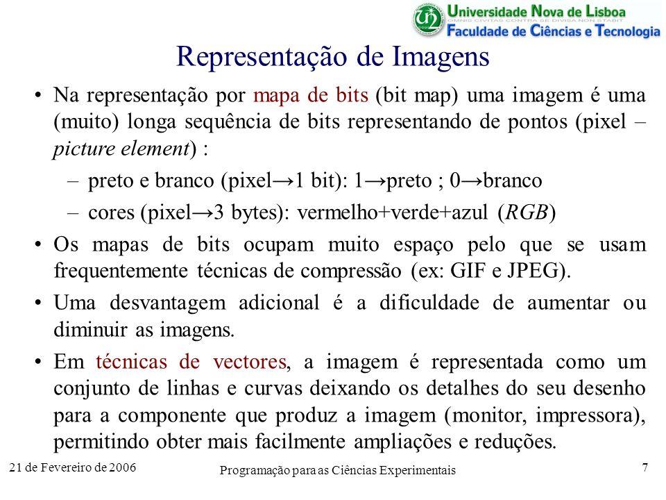 21 de Fevereiro de 2006 Programação para as Ciências Experimentais 7 Representação de Imagens Na representação por mapa de bits (bit map) uma imagem é uma (muito) longa sequência de bits representando de pontos (pixel – picture element) : –preto e branco (pixel1 bit): 1preto ; 0branco –cores (pixel3 bytes): vermelho+verde+azul (RGB) Os mapas de bits ocupam muito espaço pelo que se usam frequentemente técnicas de compressão (ex: GIF e JPEG).