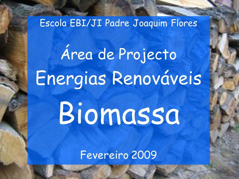 Introdução Neste trabalho que realizamos vamos falar em tópicos sobre a Biomassa.