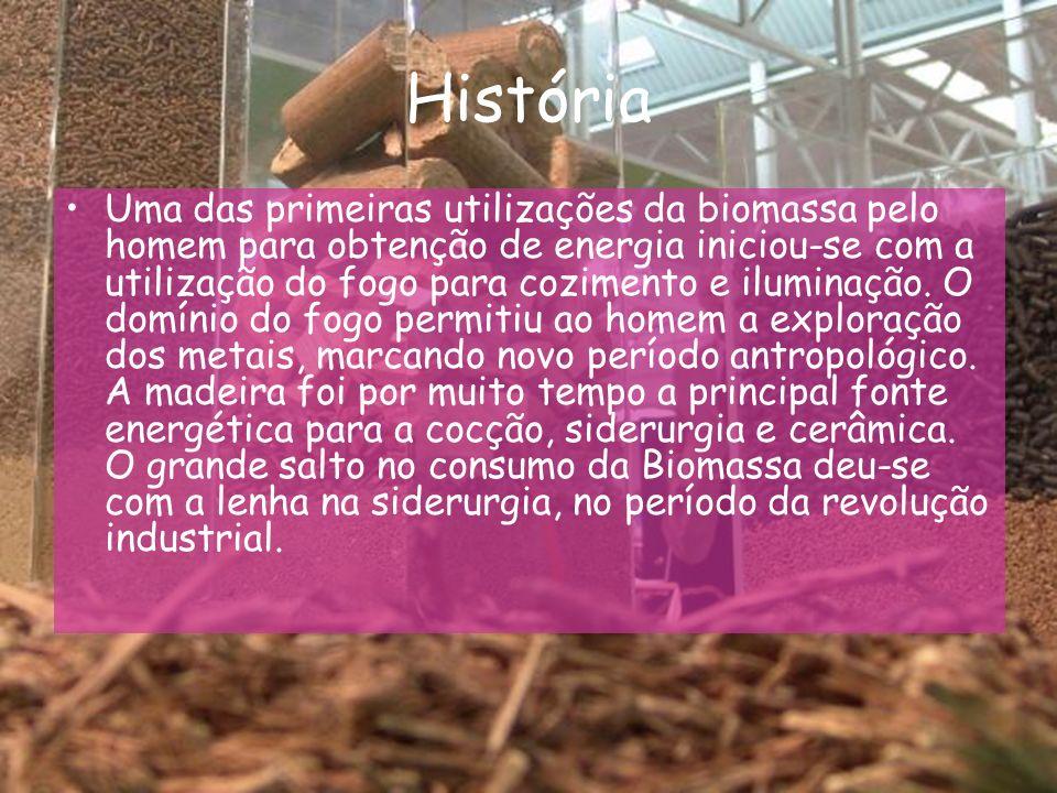 Trabalho elaborado por: Adriana nº1 Gilberto nº9 Manuel nº18 8ºC