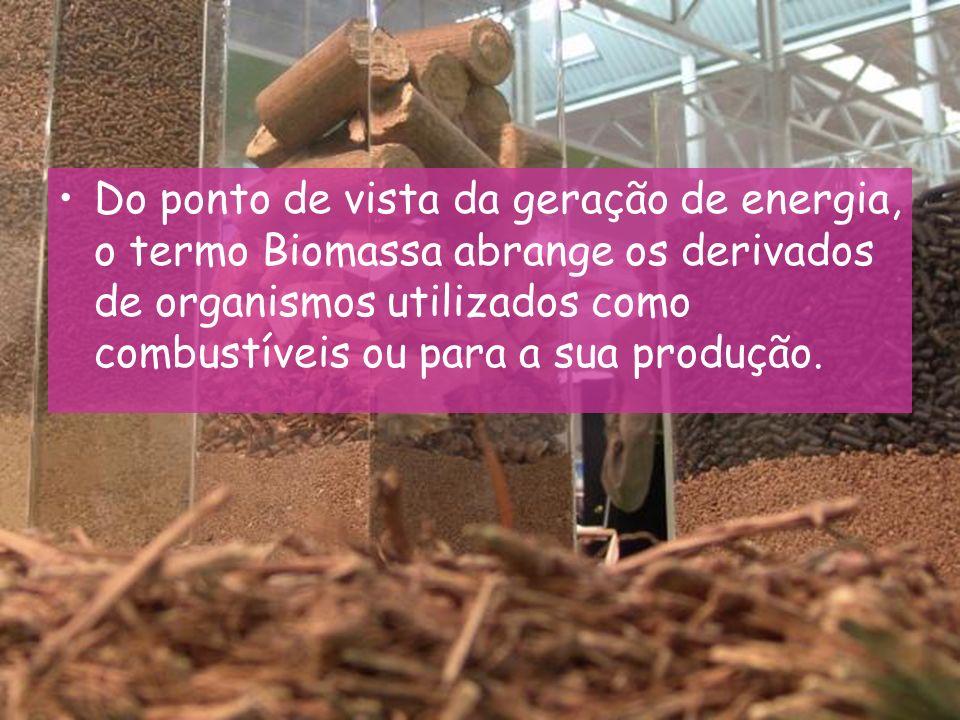 … Do ponto de vista da ecologia, Biomassa é a quantidade total de matéria viva existente num ecossistema ou numa população animal ou vegetal.