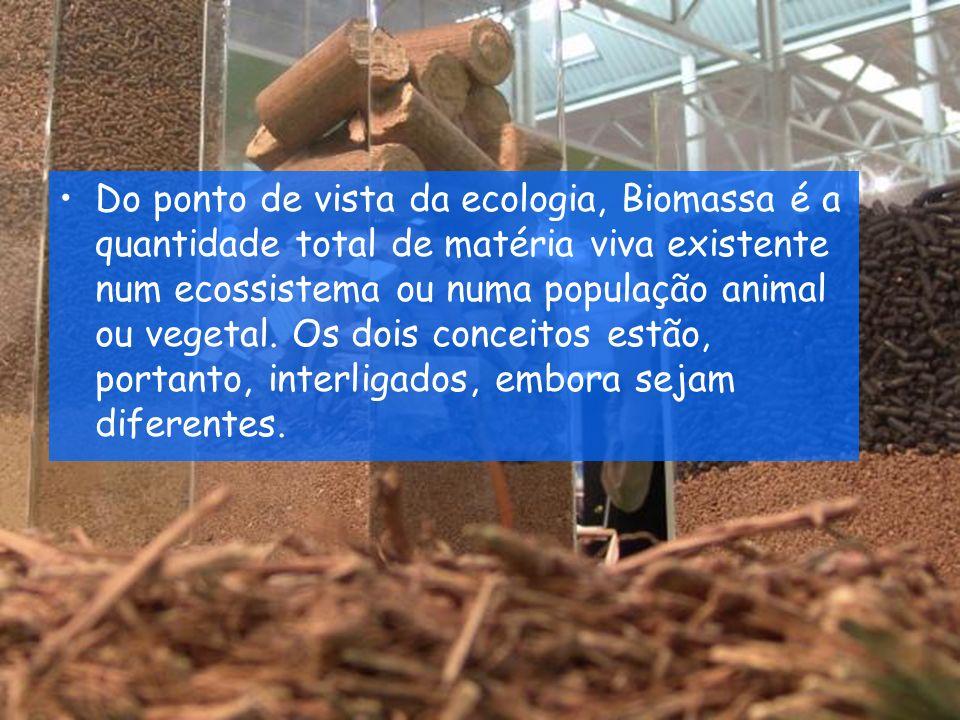 Vantagens É uma fonte de energia renovável e limpa, que pode melhorar a qualidade do ambiente.