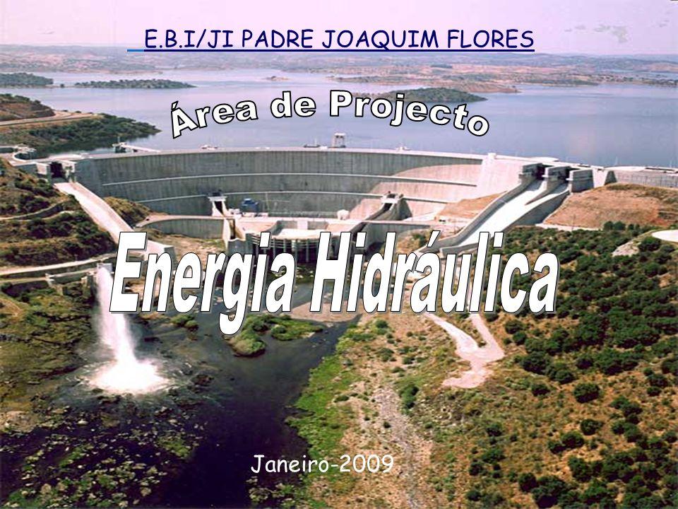 E.B.I/JI PADRE JOAQUIM FLORES Janeiro-2009