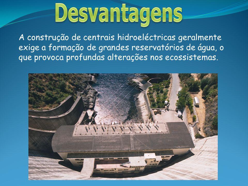 A construção de centrais hidroeléctricas geralmente exige a formação de grandes reservatórios de água, o que provoca profundas alterações nos ecossist