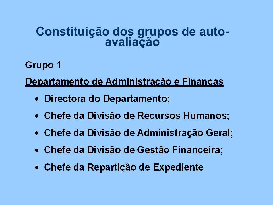 Constituição dos grupos de auto- avaliação