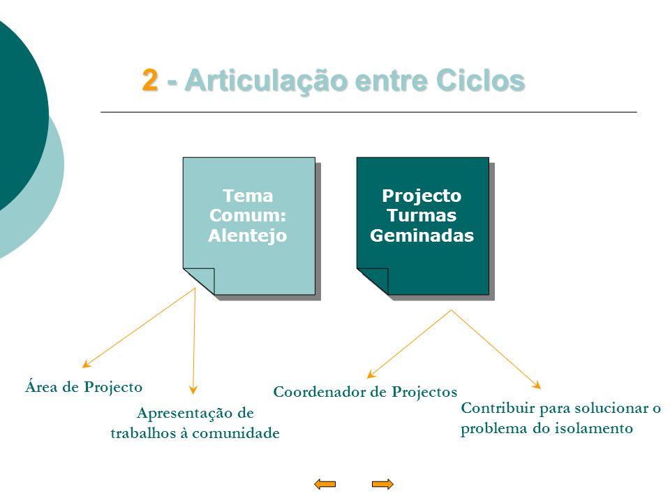2 - Articulação entre Ciclos Área de Projecto Coordenador de Projectos Apresentação de trabalhos à comunidade Contribuir para solucionar o problema do isolamento Tema Comum: Alentejo Tema Comum: Alentejo Projecto Turmas Geminadas Projecto Turmas Geminadas