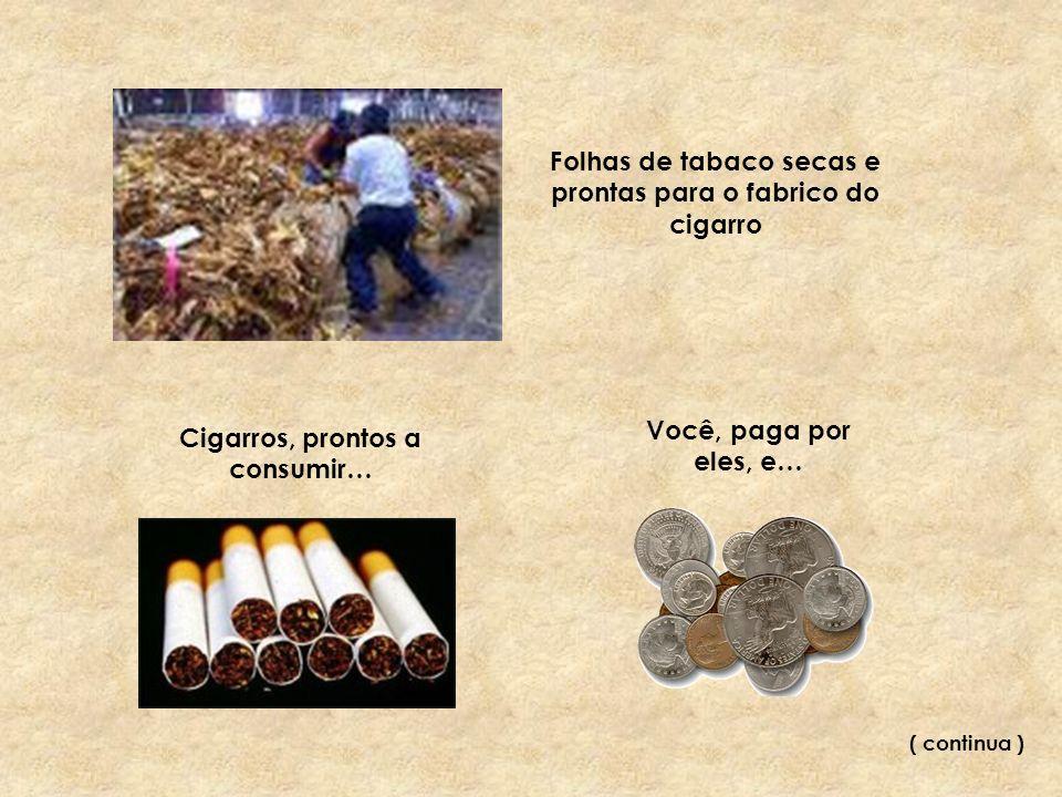 … fuma-os, cada vez mais, fuma mais e mais… …fica doente… …a doença agrava-se, o seu fim está próximo… …finalmente, deixa de fumar…