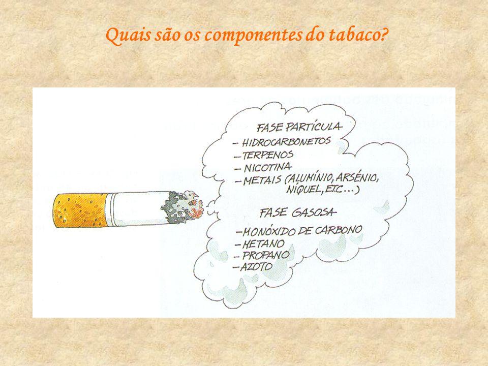 Quais os riscos do consumo de tabaco?