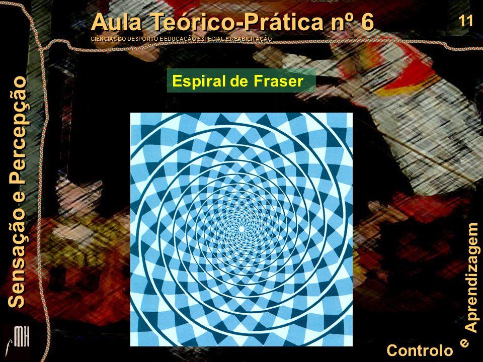 11 Controlo e Aprendizagem Aula Teórico-Prática nº 6 CIÊNCIAS DO DESPORTO E EDUCAÇÃO ESPECIAL E REABILITAÇÃO Aula Teórico-Prática nº 6 CIÊNCIAS DO DESPORTO E EDUCAÇÃO ESPECIAL E REABILITAÇÃO Sensação e Percepção Espiral de Fraser