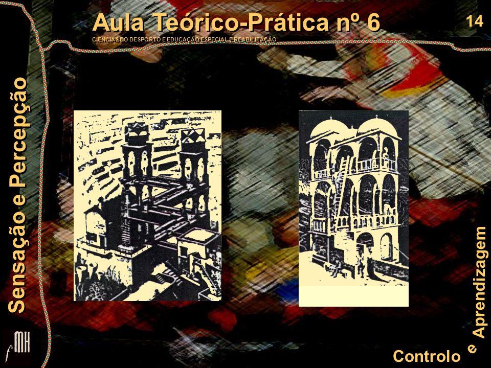 14 Controlo e Aprendizagem Aula Teórico-Prática nº 6 CIÊNCIAS DO DESPORTO E EDUCAÇÃO ESPECIAL E REABILITAÇÃO Aula Teórico-Prática nº 6 CIÊNCIAS DO DESPORTO E EDUCAÇÃO ESPECIAL E REABILITAÇÃO Sensação e Percepção