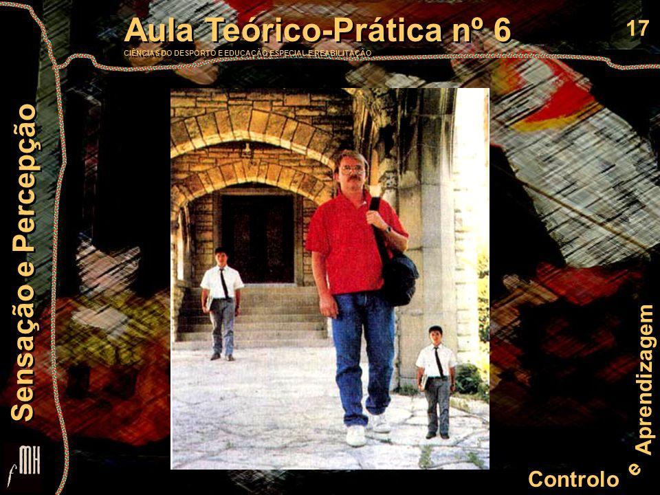 17 Controlo e Aprendizagem Aula Teórico-Prática nº 6 CIÊNCIAS DO DESPORTO E EDUCAÇÃO ESPECIAL E REABILITAÇÃO Aula Teórico-Prática nº 6 CIÊNCIAS DO DES