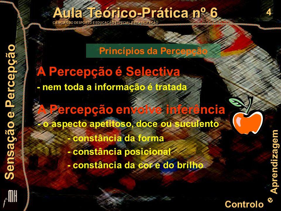 15 Controlo e Aprendizagem Aula Teórico-Prática nº 6 CIÊNCIAS DO DESPORTO E EDUCAÇÃO ESPECIAL E REABILITAÇÃO Aula Teórico-Prática nº 6 CIÊNCIAS DO DESPORTO E EDUCAÇÃO ESPECIAL E REABILITAÇÃO Sensação e Percepção