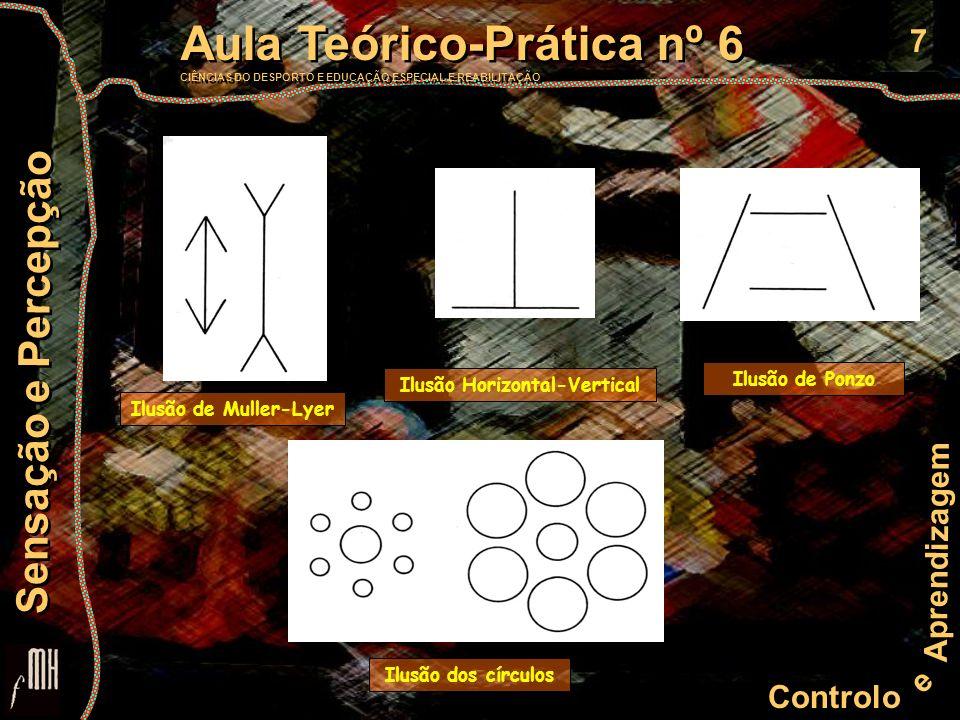 7 Controlo e Aprendizagem Aula Teórico-Prática nº 6 CIÊNCIAS DO DESPORTO E EDUCAÇÃO ESPECIAL E REABILITAÇÃO Aula Teórico-Prática nº 6 CIÊNCIAS DO DESP