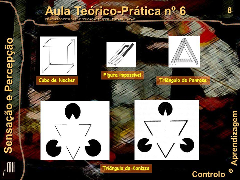 8 Controlo e Aprendizagem Aula Teórico-Prática nº 6 CIÊNCIAS DO DESPORTO E EDUCAÇÃO ESPECIAL E REABILITAÇÃO Aula Teórico-Prática nº 6 CIÊNCIAS DO DESPORTO E EDUCAÇÃO ESPECIAL E REABILITAÇÃO Sensação e Percepção Triângulo de Kanizsa Cubo de NeckerTriângulo de Penrose Figura impossível