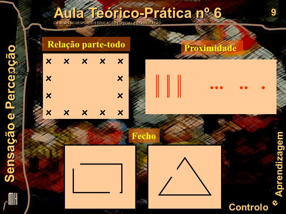 9 Controlo e Aprendizagem Aula Teórico-Prática nº 6 CIÊNCIAS DO DESPORTO E EDUCAÇÃO ESPECIAL E REABILITAÇÃO Aula Teórico-Prática nº 6 CIÊNCIAS DO DESP