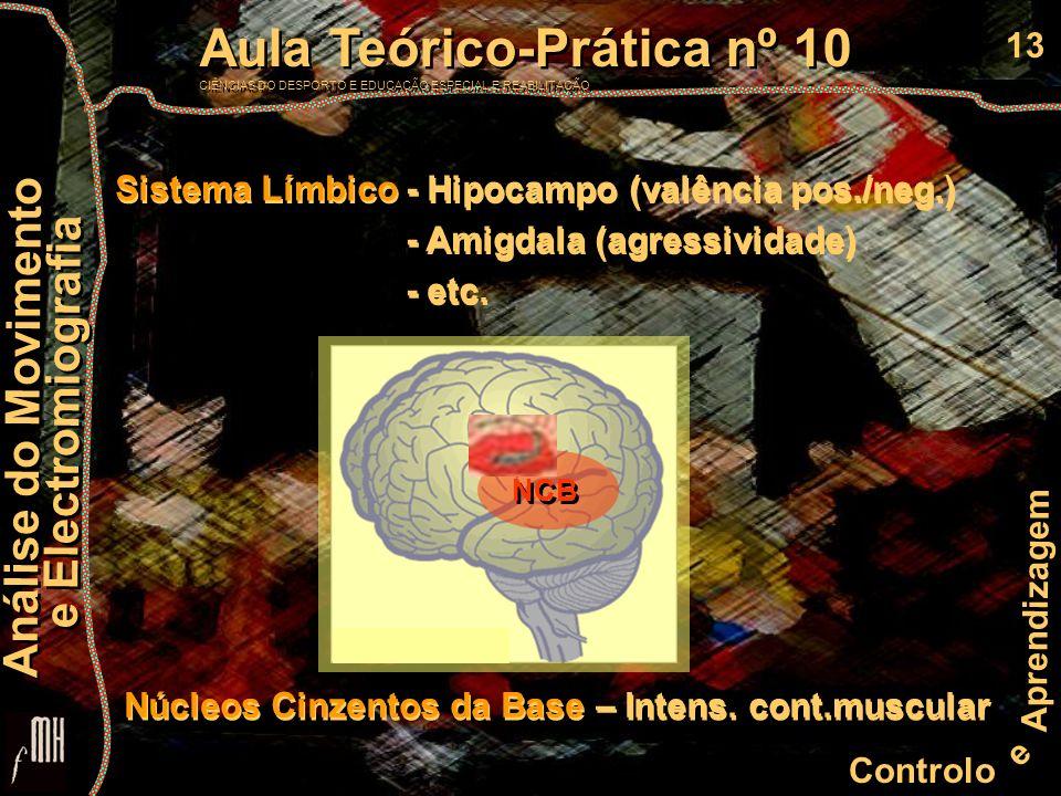 13 Controlo e Aprendizagem Aula Teórico-Prática nº 10 CIÊNCIAS DO DESPORTO E EDUCAÇÃO ESPECIAL E REABILITAÇÃO Aula Teórico-Prática nº 10 CIÊNCIAS DO DESPORTO E EDUCAÇÃO ESPECIAL E REABILITAÇÃO Análise do Movimento e Electromiografia Análise do Movimento e Electromiografia NCB Sistema Límbico - Hipocampo (valência pos./neg.) - Amigdala (agressividade) - etc.