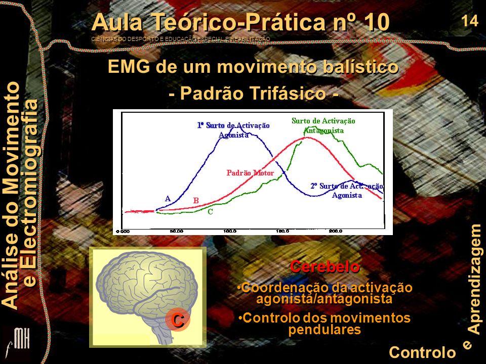 14 Controlo e Aprendizagem Aula Teórico-Prática nº 10 CIÊNCIAS DO DESPORTO E EDUCAÇÃO ESPECIAL E REABILITAÇÃO Aula Teórico-Prática nº 10 CIÊNCIAS DO DESPORTO E EDUCAÇÃO ESPECIAL E REABILITAÇÃO Análise do Movimento e Electromiografia Análise do Movimento e Electromiografia C C EMG de um movimento balístico - Padrão Trifásico - EMG de um movimento balístico - Padrão Trifásico - Cerebelo Coordenação da activação agonista/antagonista Controlo dos movimentos pendulares Cerebelo Coordenação da activação agonista/antagonista Controlo dos movimentos pendulares