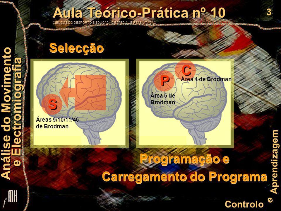 3 Controlo e Aprendizagem Aula Teórico-Prática nº 10 CIÊNCIAS DO DESPORTO E EDUCAÇÃO ESPECIAL E REABILITAÇÃO Aula Teórico-Prática nº 10 CIÊNCIAS DO DESPORTO E EDUCAÇÃO ESPECIAL E REABILITAÇÃO Análise do Movimento e Electromiografia Análise do Movimento e Electromiografia S S Áreas 9/10/11/46 de Brodman P P C C Área 6 de Brodman Área 4 de Brodman Selecção Programação e Carregamento do Programa Programação e Carregamento do Programa