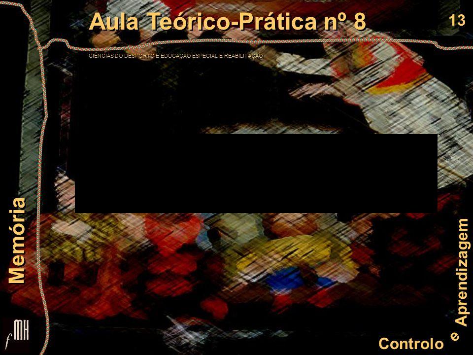 13 Controlo e Aprendizagem Aula Teórico-Prática nº 8 CIÊNCIAS DO DESPORTO E EDUCAÇÃO ESPECIAL E REABILITAÇÃO Aula Teórico-Prática nº 8 CIÊNCIAS DO DES