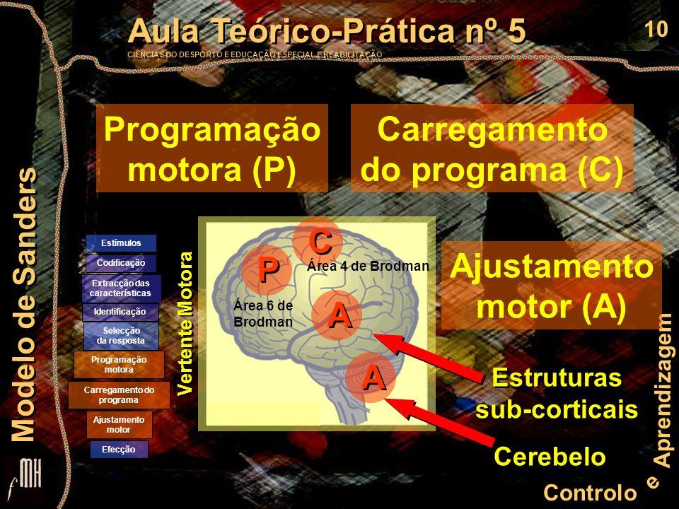 10 Controlo e Aprendizagem Aula Teórico-Prática nº 5 CIÊNCIAS DO DESPORTO E EDUCAÇÃO ESPECIAL E REABILITAÇÃO Aula Teórico-Prática nº 5 CIÊNCIAS DO DES