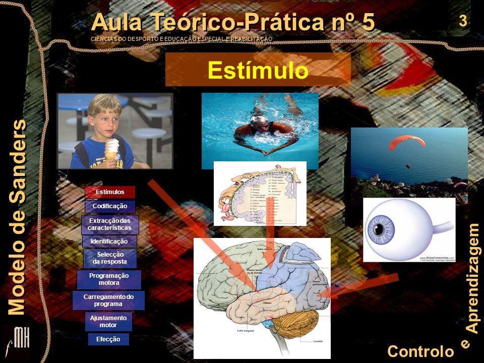 3 Controlo e Aprendizagem Aula Teórico-Prática nº 5 CIÊNCIAS DO DESPORTO E EDUCAÇÃO ESPECIAL E REABILITAÇÃO Aula Teórico-Prática nº 5 CIÊNCIAS DO DESP