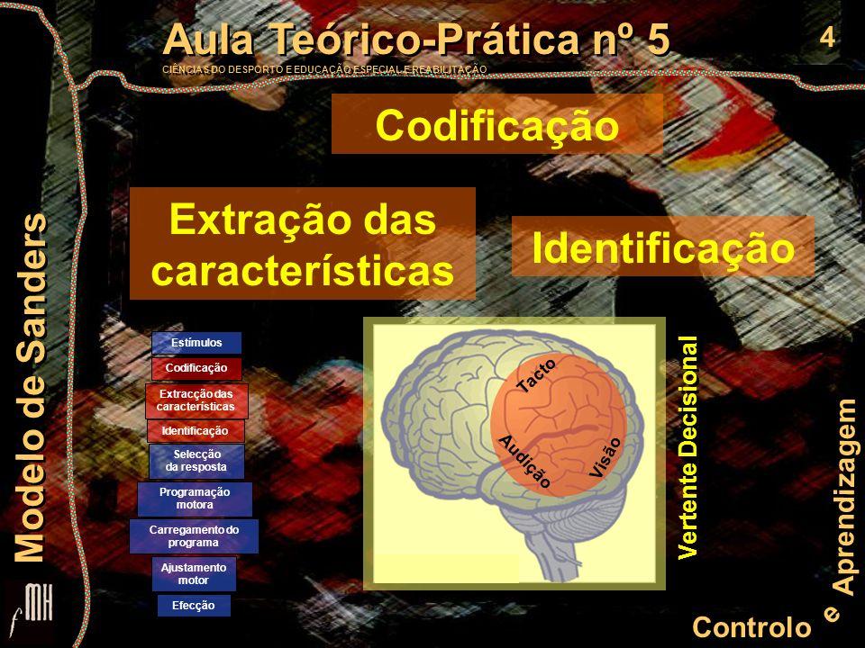 5 Controlo e Aprendizagem Aula Teórico-Prática nº 5 CIÊNCIAS DO DESPORTO E EDUCAÇÃO ESPECIAL E REABILITAÇÃO Aula Teórico-Prática nº 5 CIÊNCIAS DO DESPORTO E EDUCAÇÃO ESPECIAL E REABILITAÇÃO Modelo de Sanders Codificação Operação que transforma a informação disponível (sons, imagens, temperatura) em informação de natureza bioeléctrica que pode circular e ser tratada no sistema nervoso.