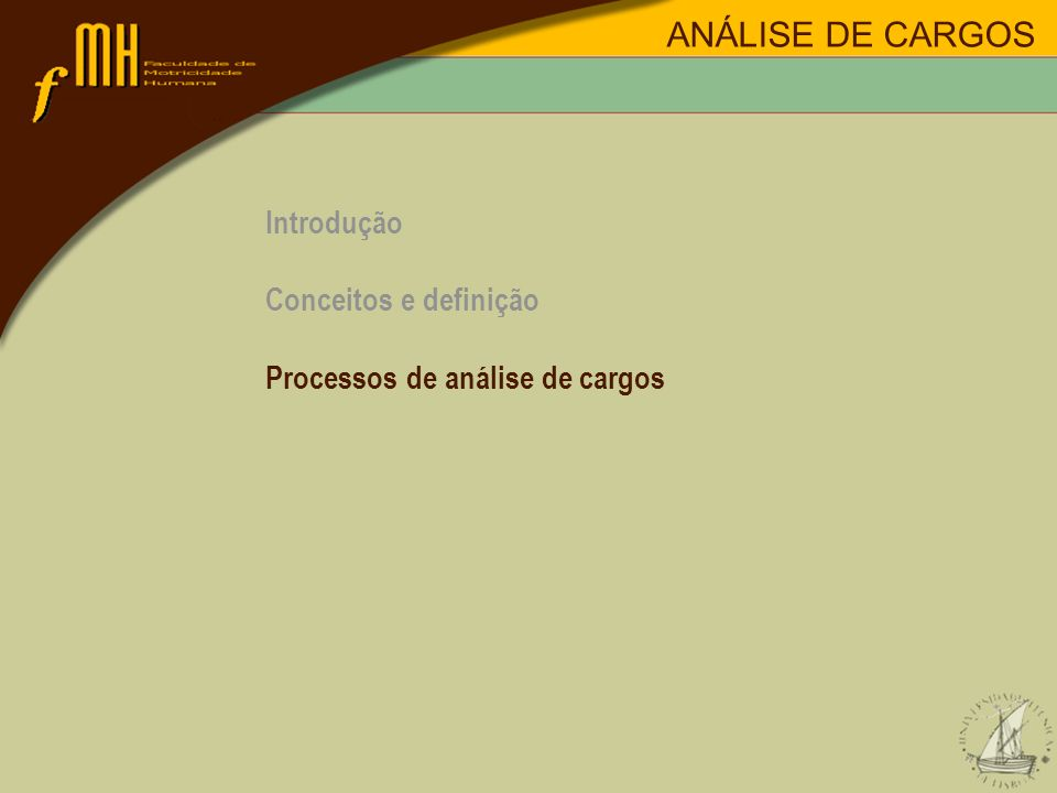 Introdução Conceitos e definição Processos de análise de cargos ANÁLISE DE CARGOS
