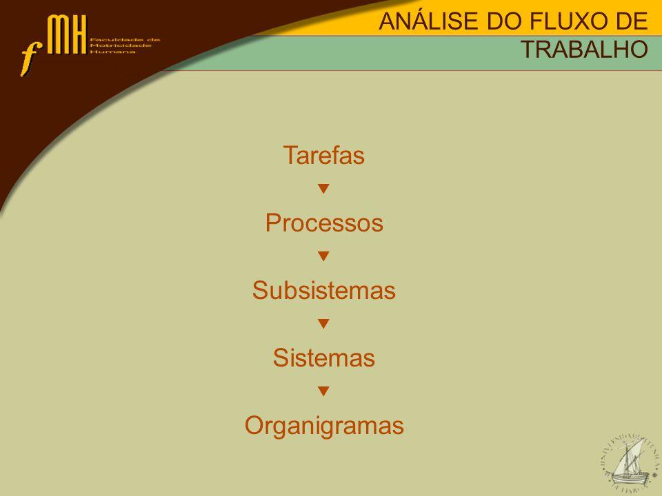 ANÁLISE DO FLUXO DE TRABALHO Tarefas Processos Subsistemas Sistemas Organigramas
