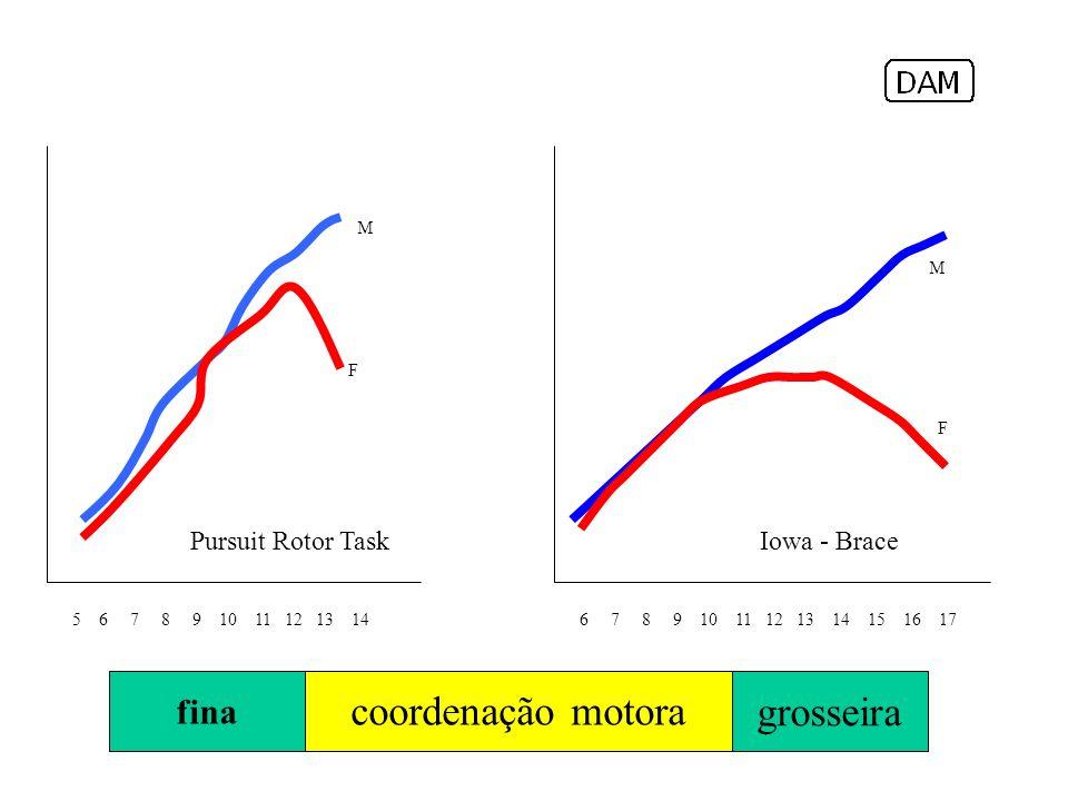 fina Algumas referências de velocidade de corrida Pursuit Rotor Task 5 6 7 8 9 10 11 12 13 14 M F 6 7 8 9 10 11 12 13 14 15 16 17 M F Iowa - Brace coordenação motora grosseira