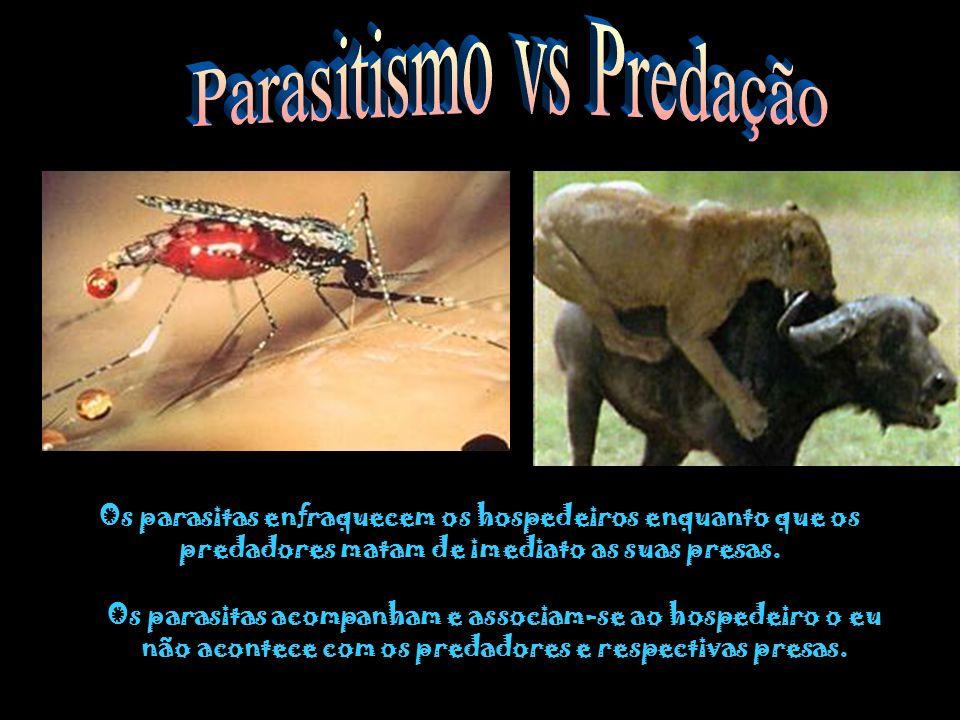 Ectoparasitismo Endoparasitismo O parasita vive no exterior do hospedeiro O parasita vive no interior do hospedeiro